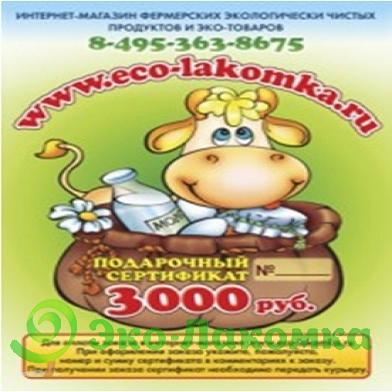 Подарочный сертификат на 3000 руб, 1шт