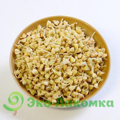 Проростки гречки зеленой, 200 г